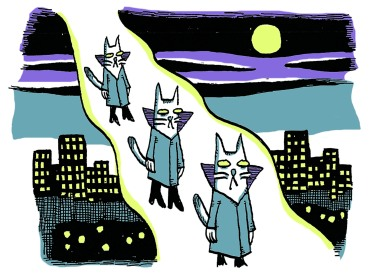 space cats1